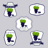 The grape. Abstract vector illustration logo for whole ripe berry grape with green stem leaf cut sliced on background.Grape drawing consisting of tag label peel Stock Photo