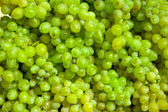 Grape background Stock Images