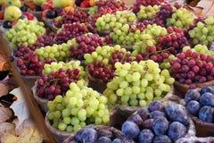 Grape background. Royalty Free Stock Photos