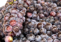 Grape background Stock Photos