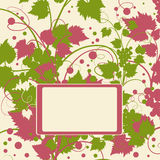 The grape background. Royalty Free Stock Images