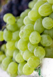 Grape background 2 Stock Photo