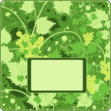 The grape background frame. Abbstract grapes green background frame Royalty Free Stock Photo