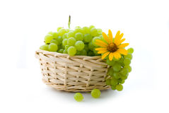 Grape in basket stock image