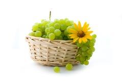 Grape in basket Stock Image