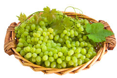 Grape in basket. Grape with some leaves in basket isolated on white background royalty free stock photography