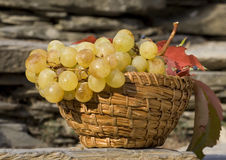 Grape basket Stock Photo