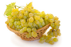 Grape in a basket. Bunch of raw grape in a basket isolated over white background Royalty Free Stock Images