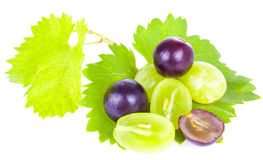 Grape berries Stock Image
