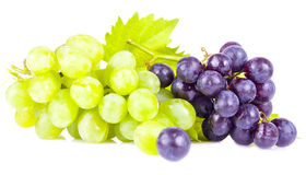Grape berries Stock Photography