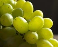 Grape berries Stock Photo