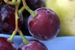 Grape berry Royalty Free Stock Photos