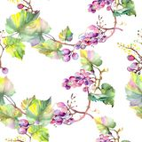 Grape berry healthy food. Watercolor illustration set. Seamless background pattern. Fabric wallpaper print texture. Grape berry healthy food. Watercolor vector illustration