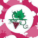 Grape berry leaf. Colorful grape concept with both berry and leaf silhouettes on paint spots background. Stock vector illustration on vineyard and vine products Stock Photography