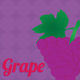 Grape. Big grape on special purple background Stock Photos