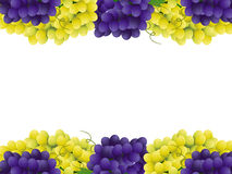 Grape border Stock Image