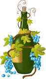 Grape and bottle. The depiction of a green bottle with vines Stock Images