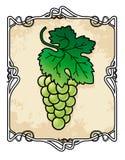 Grape Brunch Frame royalty free illustration