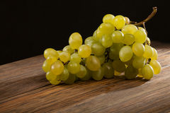 Grape brunch Stock Photo