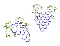 Grape bunch Royalty Free Stock Image