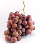 Grape bunch. Laying bunch of purple grape Stock Image