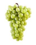 Grape bunch Royalty Free Stock Photos