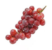 Grape Bunch on White Background Stock Images