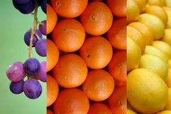 Grape and citrus. Picture of a Grape and citrus Stock Photos