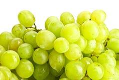 Grape close-up Royalty Free Stock Photos
