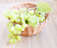 Grape cluster Stock Photos