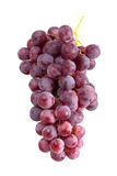 Grape cluster. Isolated on white background Royalty Free Stock Photo