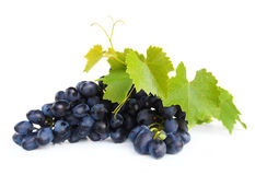 Grape cluster with green leafs Royalty Free Stock Photos