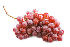 Grape cluster isolated on a white background. Stock Photos