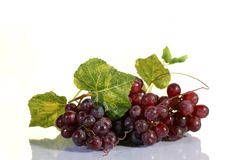 Grape cluster with leaves. On a white background Stock Image