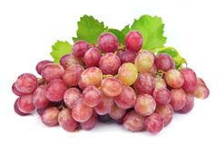 Grape cluster with leaves Royalty Free Stock Image