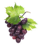 Grape cluster with leaves isolated Stock Photos