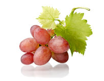 Grape cluster with leaves Stock Photos