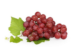 Grape cluster. Very clean grape  on white background Stock Image