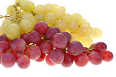 Grape clusters stock photos