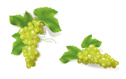 Grape clusters. 3D ripe grape illustration. Contains mesh. Isolated on white Stock Illustration