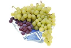 Grape clusters Royalty Free Stock Photography