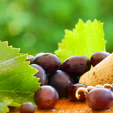 Grape and cork on green foliage Stock Photo