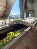 Grape crusher at winery Royalty Free Stock Image