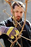 Grape cutting Royalty Free Stock Photo