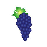 Grape dark blue. Dark grape blue vector object Royalty Free Stock Photos