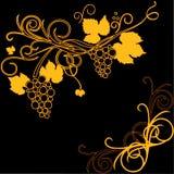 Grape design element Stock Image