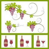 Grape design elements. Royalty Free Stock Photos