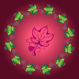 Grape design elements Stock Image