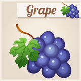 Grape. Detailed Vector Icon Royalty Free Stock Image