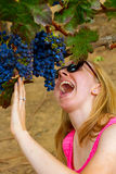 Grape Eater. A woman crouches under a bunch of grapes growing on a vine at a vineyard and pretends to be about to eat the whole bunch Royalty Free Stock Image